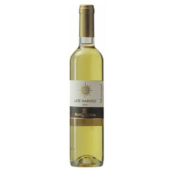 ワイン 【500ml】レイトハーヴェスト /サンタ・アリシア(LATE HARVEST) チリ 白 甘口 500ml