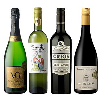 BBQおすすめ4本セット(赤2本・白・白泡)(BBQ wine four bottls set) その他 3000ml