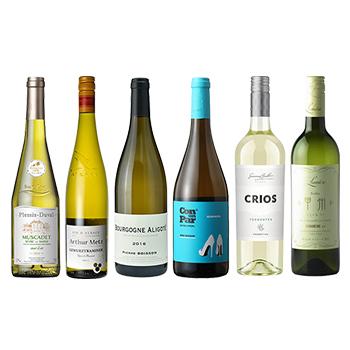 ワイン ソムリエ2次試験対策 品種飲み比べ白6本セット / オリジナル(Competition for kind drink white wine six bottle set) その他 辛口 4500ml