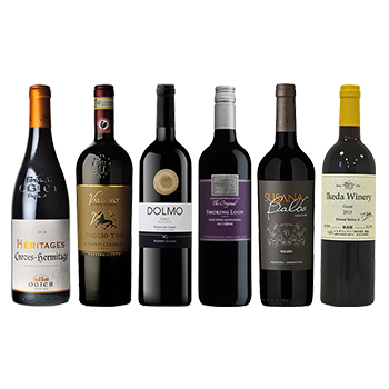 ワイン ソムリエ2次試験対策 品種飲み比べ赤6本セット / オリジナル(Competition for kind drink red wine six bottle set) その他 4500ml